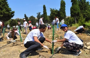 Tree Planting Drive to mark the celebrations of the  150th Birth Anniversary of Mahatma Gandhi